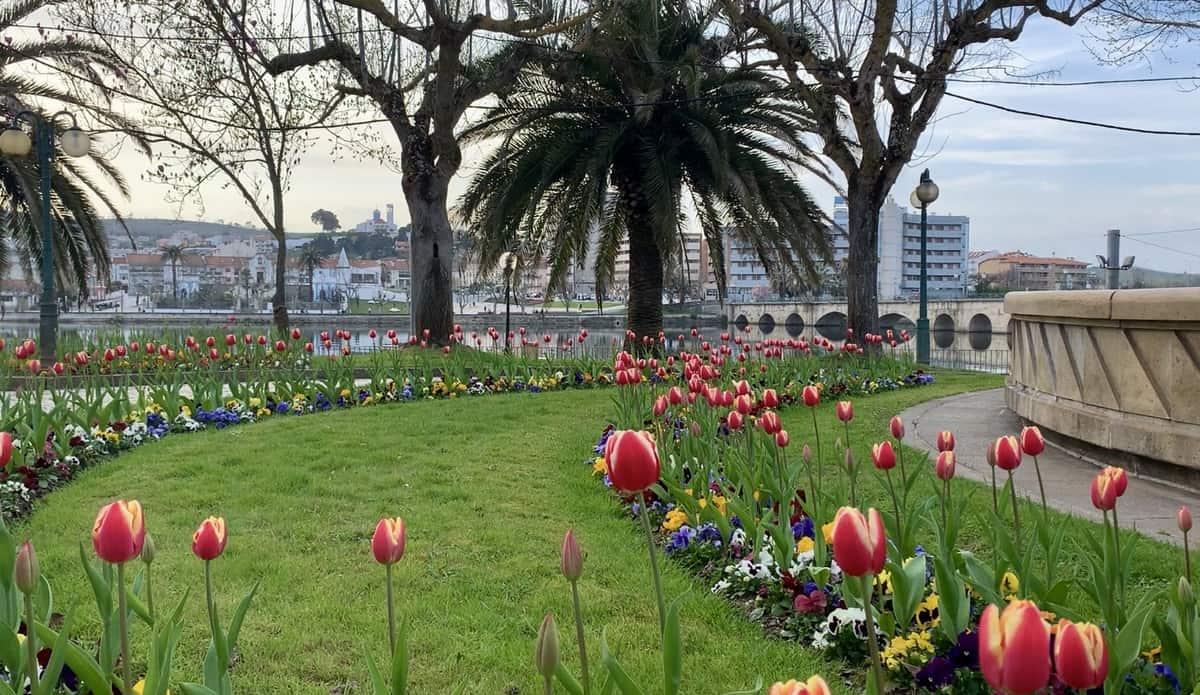 Jardins 5